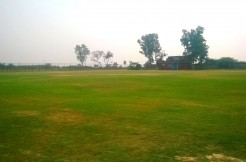 Cricket Ground in Delhi, Cricket grounds on rent